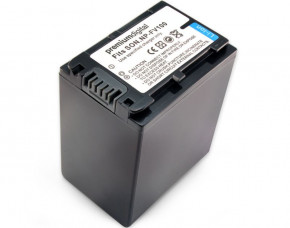 Sony Handycam NEX-VG30E Replacement Battery (Large)